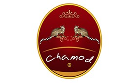 Graphic Design Chamod